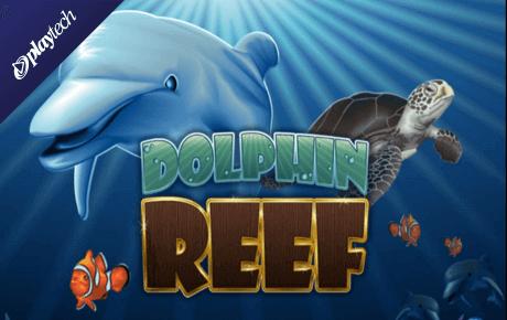Dolphin Reef Kolikkopelit